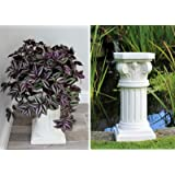 HH Home Hut Garden Ornament Plant Pot Stand Roman Column Decoration Outdoor Indoor 52cm tall
