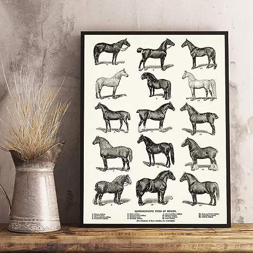 Pferde Ranch Weide Wiese Leinwand Bild Wandbild Kunstdruck L0470