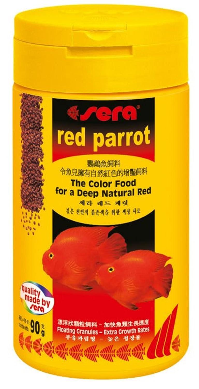 Fine Blood Parrot Fish Colors Composition - Coloring Page ...