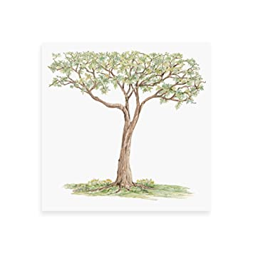 Beautifully Crafted Life-Size Tree Wall Decal 7.5 Feet X 7.5 Feet.  sc 1 st  Amazon.com & Amazon.com: Beautifully Crafted Life-Size Tree Wall Decal 7.5 Feet ...