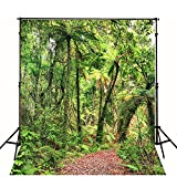 1.5x2.1m(5X7ft) Rainforest Scenic Backdrops Red Maple Leaf Jungle Trail Background Tall Trees Green Leaves Digital Studio Background for Studio WY00017