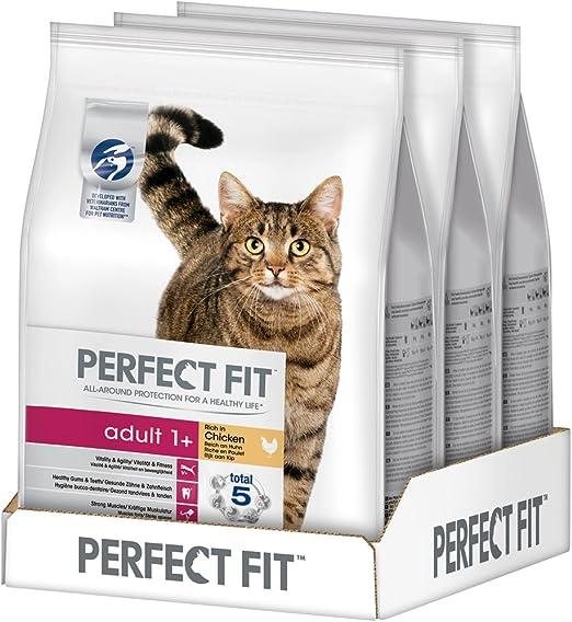 Pienso Completo de Pavo para Gatos: Amazon.es: Productos para mascotas