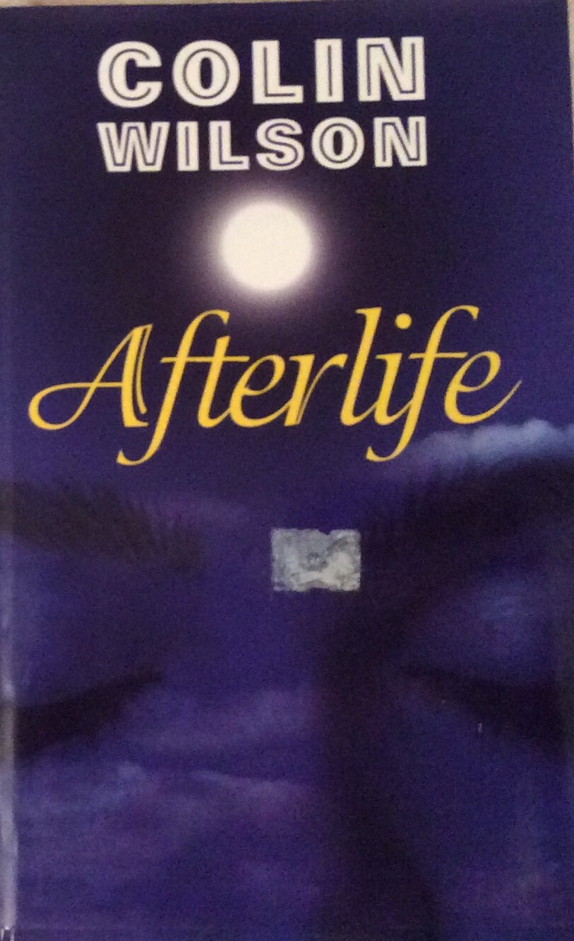 Afterlife pdf epub