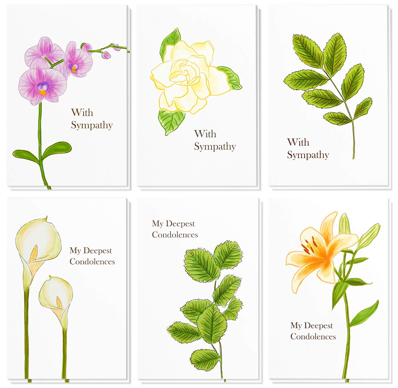 48 Pack Sympathy Greeting Cards Bulk Box Set 6 Classy Floral and Foliage Designs with Sentiments, Envelopes Included, 4 x 6 Inches Best Paper Greetings