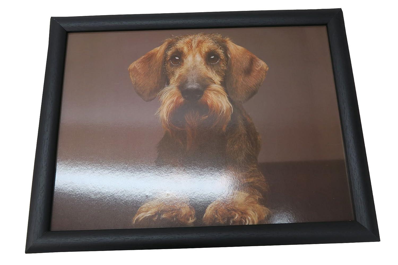 Unbekannt Rodillera Bandeja con treuem Perro Salchicha 43 x 33 x 7 cm: Amazon.es: Hogar