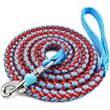 Mycicy Mountain Climbing Rope Dog Leash - 6 Foot Reflective Nylon Braided Heavy Duty Dog Training Leash for Large and…
