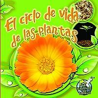 El Ciclo de Vida de Las Plantas: Plant