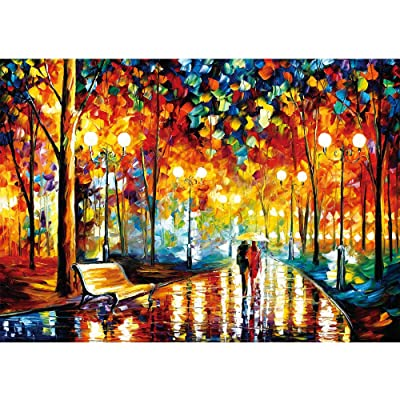 Puzzle 1000 Piece Jigsaw Puzzle for Kids Adult – Mini Rainy Night Stroll Jigsaw Puzzle (12in x 17in): Toys & Games