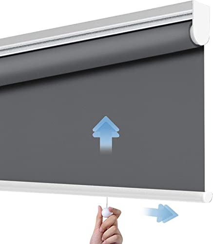 PASSENGER PIGEON Cordless Thermal Insulated Roller Shade