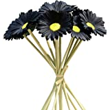 """Mandy's 12pcs Artificial Black Latex Daisies 15"""" for Party Home Kitchen Decoration (vase not Include)"""