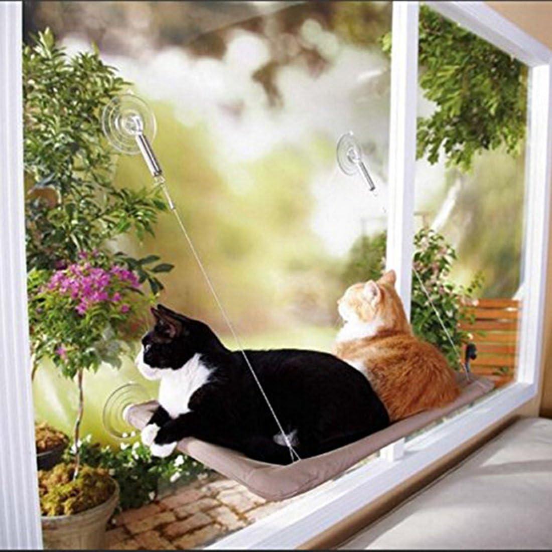 Cama Colgante de Mascota con Ventosas de Perilla Resistentes para Descansar y Tomar el Sol Weichuang Hamaca Ventana de Gato con Manta Gato y Pluma Juquete para Gato
