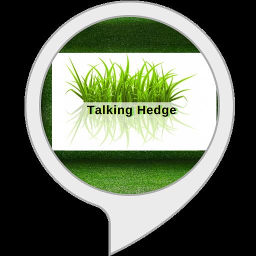 712lbmLtYEL - The Talking Hedge