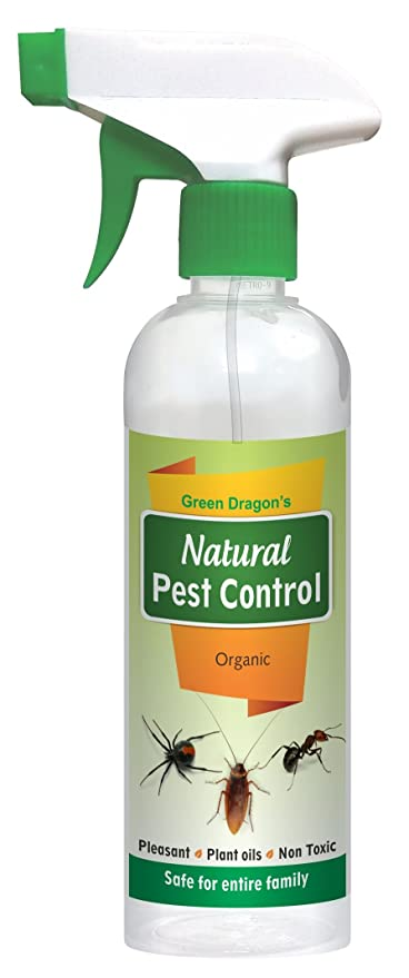 Green dragons plastic natural pest control spray do it yourself green dragons plastic natural pest control spray do it yourself pack 500ml light milky solutioingenieria Gallery