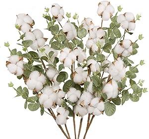 "YOUZAN 6pcs 22"" Cotton Stems with Eucalyptus Leaves 5 Balls Per Cotton Branches for Home Farmhouse Style Floral Decoration"