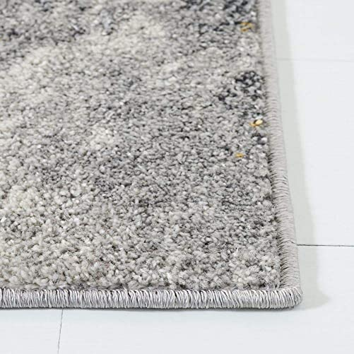 Safavieh Adirondack Collection ADR134H Area Rug