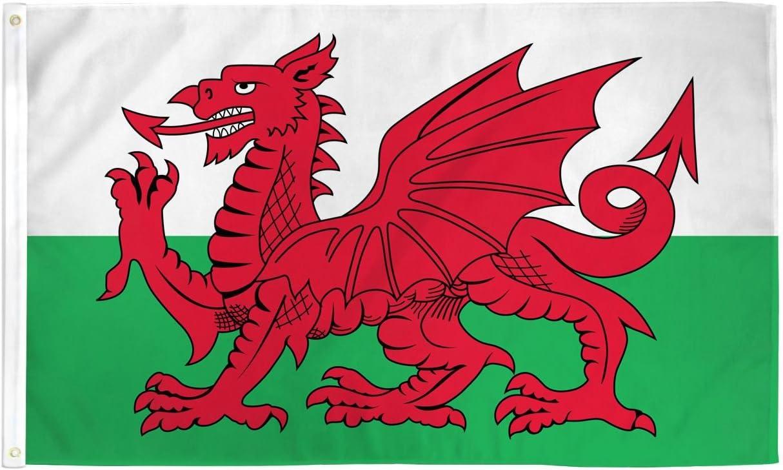 Amazon Com Trendyluz Flags Wales Welsh Dragon National Banner