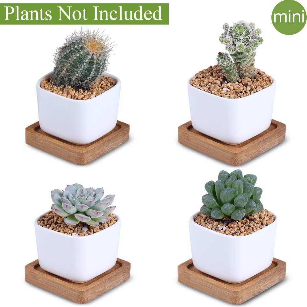 Unibene 2 Inch Mini White Ceramic Contemporary Square Cactus Succulents Pots with Bamboo Tray and Drainage Hole, Indoor Bonsai Planters Containers, Decor for Home Office Garden Kitchen - 4 Pack