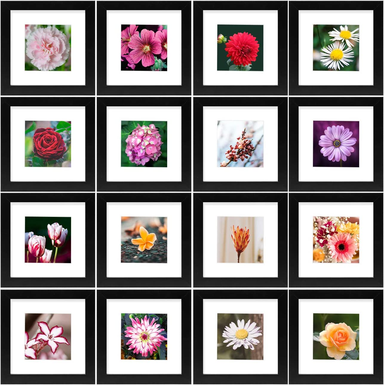 Golden State Art, Smartphone Instagram Frames Collection, Set of 16, 6x6-inch Square Photo Wood Frames with White Photo Mat & Real Glass for 4x4 Photo, Black