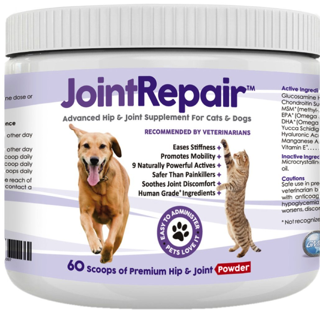 Advanced Hip & Joint Supplement for Dogs and Cats - Fast Natural Arthritis Pain Relief. Powder with Glucosamine, Chondroitin, MSM, Hyaluronic Acid & Omega 3 Fish Oil. Made in USA - 60 Scoops.