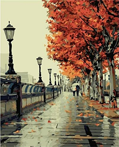DreamsyUS DIY Oil Paint by Number Kit,Colorful Canvas Painting Paintworks Park Stree Light Wall Art Picture Drawing with Brushes 1620 inch Christmas Decor Decorations Gifts with Frame
