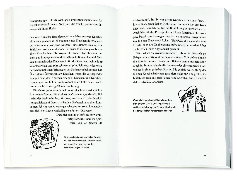 Großzügig Definieren Kompakte Knochen Galerie - Menschliche Anatomie ...