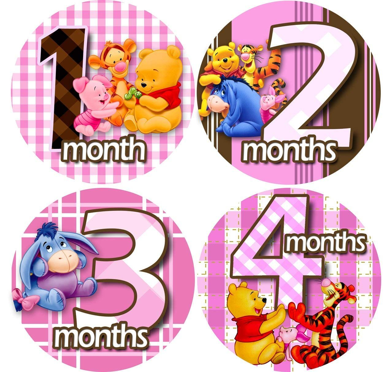 PINK WINNIE POOH 1-12 Month Baby Monthly One Piece Stickers Baby Shower Gift Photo Shower Stickers … EasySells