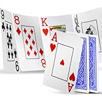 INTEGEAR Playing Cards 2 Decks Waterproof Plastic Poker Cards for Texas Holdem Poker Go Fish and More Card Games, Jumbo…