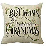 Amazon Price History for:Best Mother's Day Gifts Best Moms Get Promoted To Grandmas Blessing Flower Characters Cotton Linen Throw Pillow Case Cushion Cover Home Office Decorative Square 18 X 18 Inches