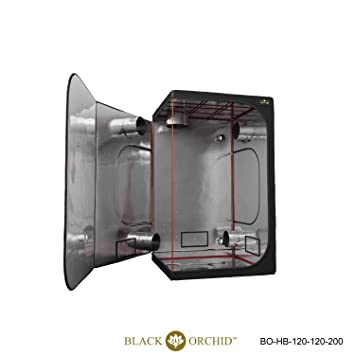 Noir Orchidée 120 x 120 x 200 Tente Tente de culture hydroponique ...