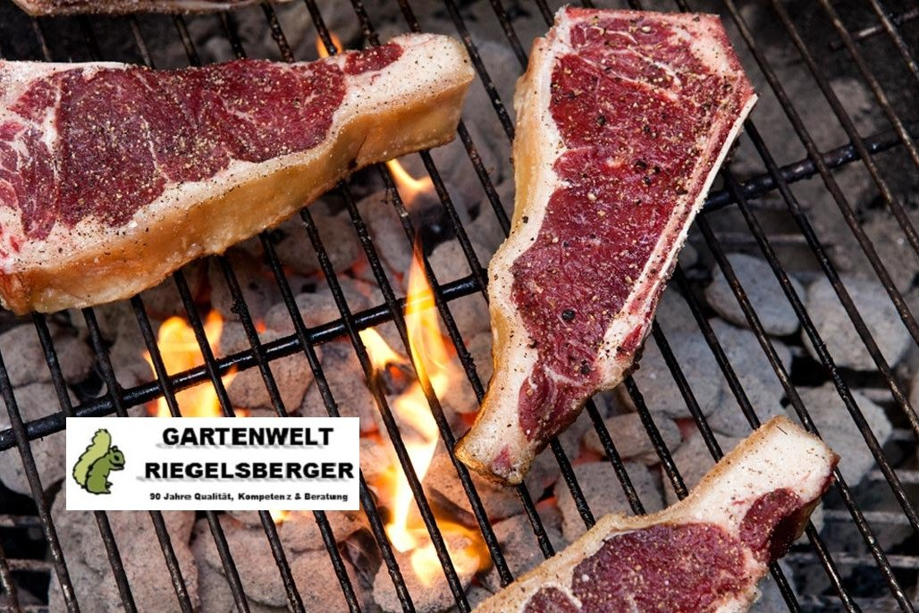 barbecue Brikett Briquettes Barbecue charbon de bois Fabriqu/é en Allemagne de jardin monde Verrou Berger 1x 2,5 kg dur/ée de combustion jusqu/à 4,5/heures Manufacture de charbon Premium Briquettes pour barbecue fum/ée sans
