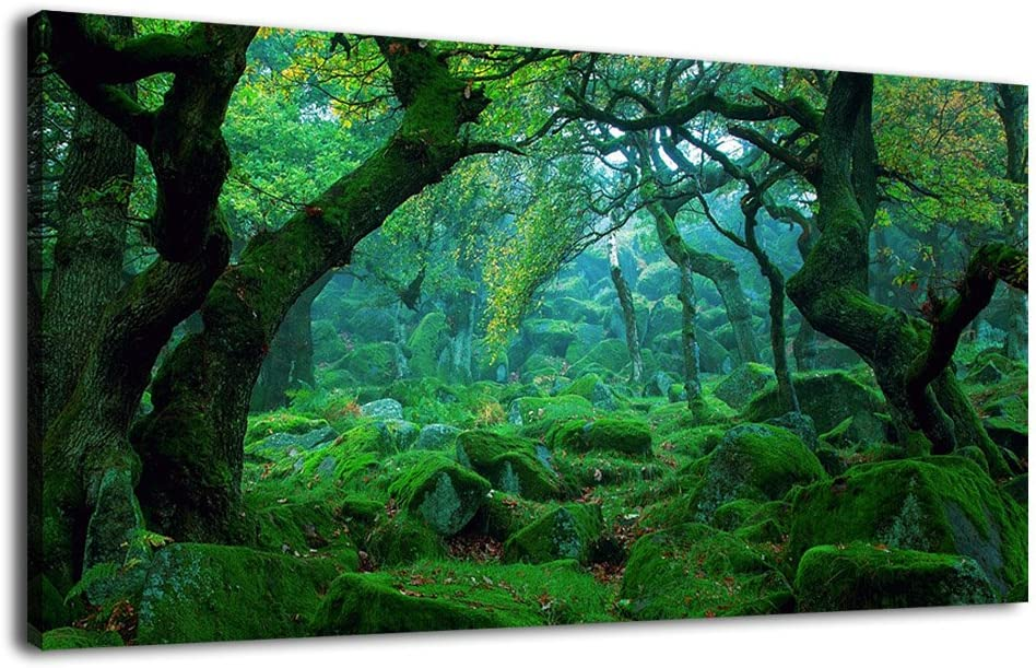 """Green Forest Canvas Wall Art Living Room Decoration Big Trees Nature Picture Large Modern Canvas Artwork Contemporary Woods Mossy Rock Spring Season Prints for Kitchen Office Home Decoration 20"""" x 40"""""""