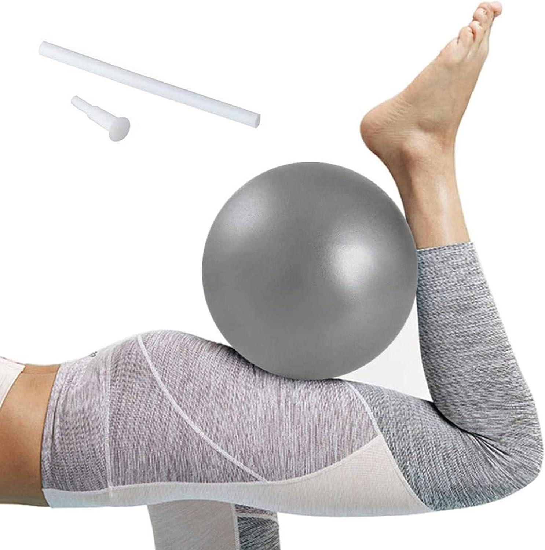 Softball Pilates, Mini Pelota de Ejercicio de 25cm, Anti-Burst Ballon Fitness, Softball Pilates para Gimnasio, Yoga, Masaje y Pilates en Casa (Gris)