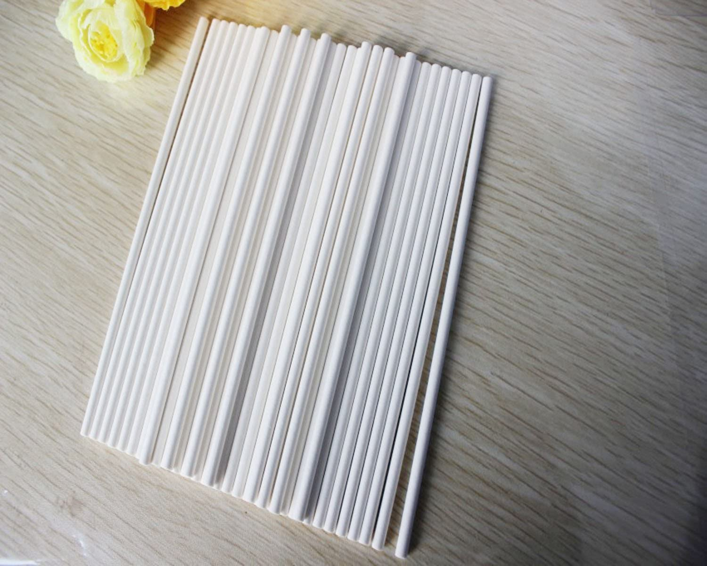 10cm Paper stalks for Flexiform Cake Pops Set of 100 by DELIAWINTERFEL Lollipop Sticks