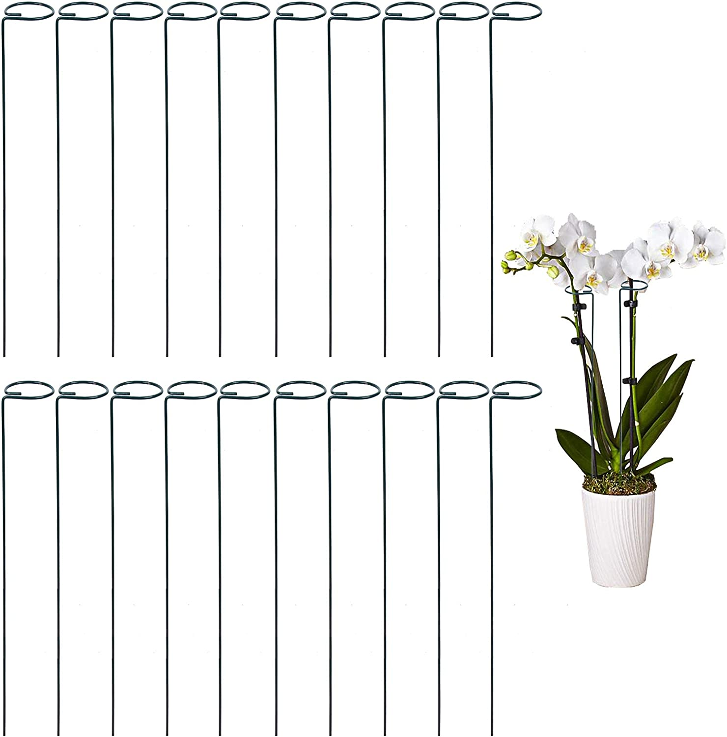 Amazon Com Tingyuan 36 Inches Single Stem Plant Support Stakes Steel Garden Stakes Pack Of 20 Garden Outdoor