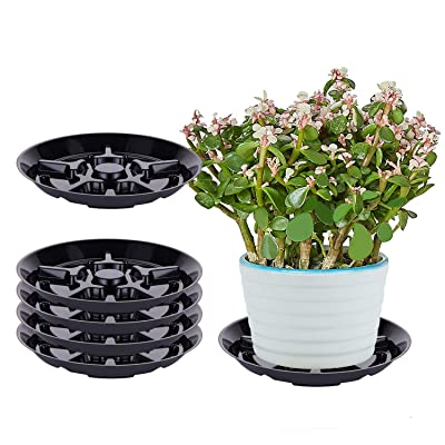 "OAKBAY 5 Pieces of 8 Inch Black Thick Plastic Heavy Duty Plant Saucer Drip Tray for Pots (8"") : Garden & Outdoor"