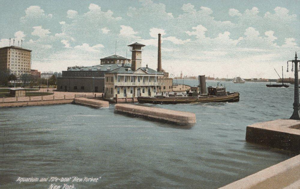 ニューヨーク、NY – 水族館と消防艇「ニューヨーカー」 24 x 36 Giclee Print LANT-6341-24x36 B017ZJDSO8  24 x 36 Giclee Print