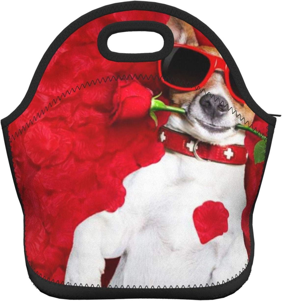 Auralto Insulated Neoprene Lunch Bag Tote Funly Red Rose Sunglasses Dog Handbag Lunchbox Food Container Gourmet Tote Cooler Warm Pouch for School Work Office
