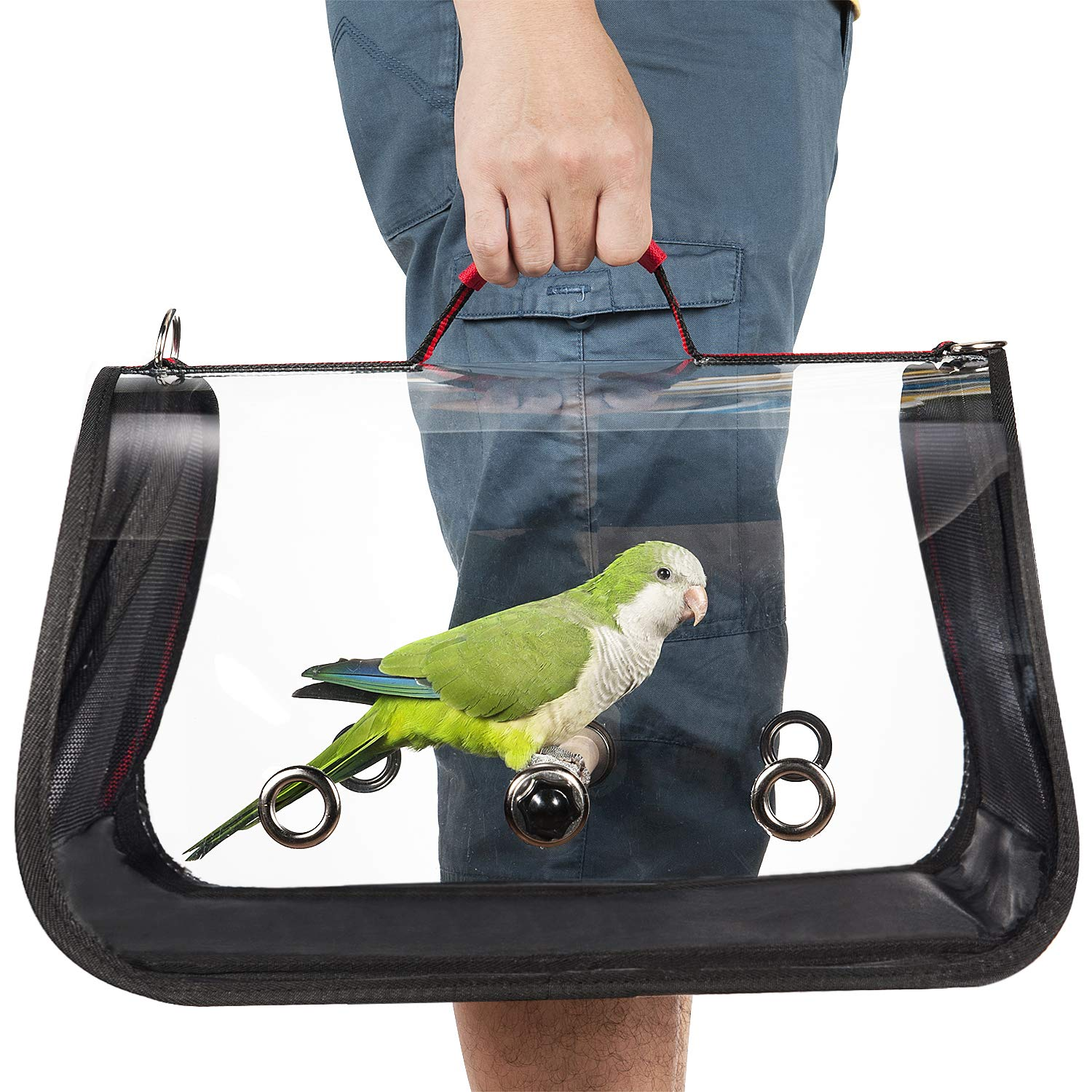 Colorday Lightweight Bird Carrier, Bird Travel cage Parrot (Medium 16 x 9 x 11, Red) by Colorday