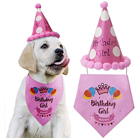 LUTER Dog Birthday Bandana Triángulo Bufandas Lindo Perrito ...
