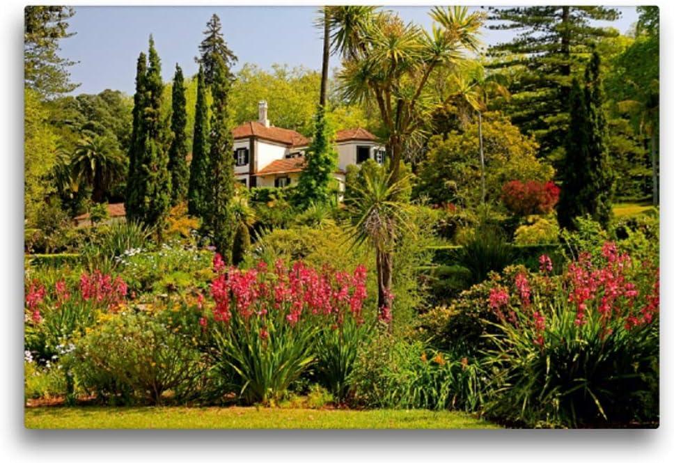 Madeira – Jardines y Quintas, 45x30 cm: Lielischkies, Klaus: Amazon.es: Hogar
