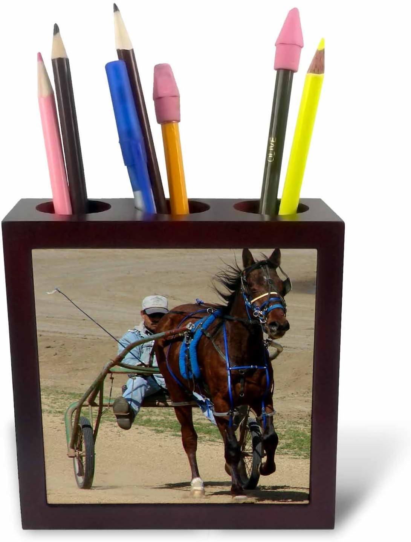 3dRose ph_6434_1 Harness Racing Tile Pen Holder, 5-Inch