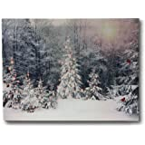 Winter Scene Canvas Print - LED Light Up Print with Red Cardinals and Snowy White Christmas Trees - 12 x 16 Canvas Print