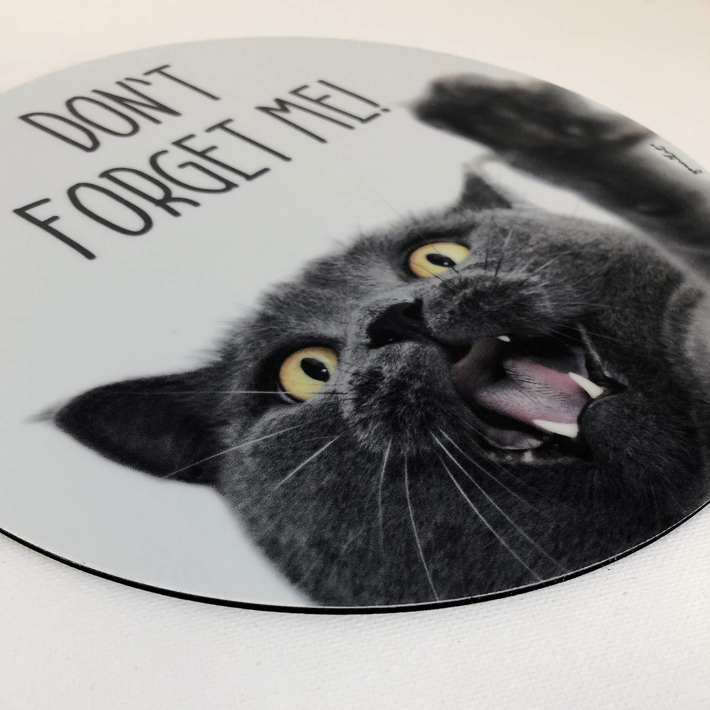 motivo: I per ragazze e ragazze gatto quadrato Tappetino per il mouse con gatto misura standard antiscivolo Snuggle I dv/_397 in plastica