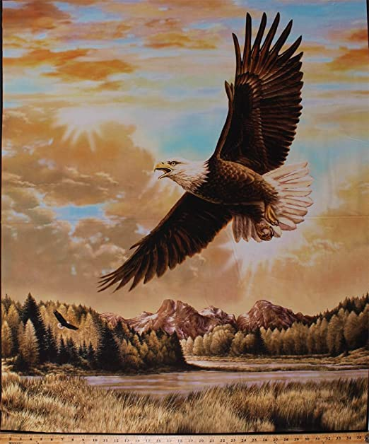 Bald Eagle Flying Over the Mountains Scenic Home Business Office Sign