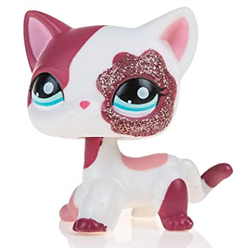 Amazon.es: Great gifts store littlest pet shop Animal Pet Cat Collection Child Girl Boy Figure Toy Loose Cute lps by new brand: Juguetes y juegos