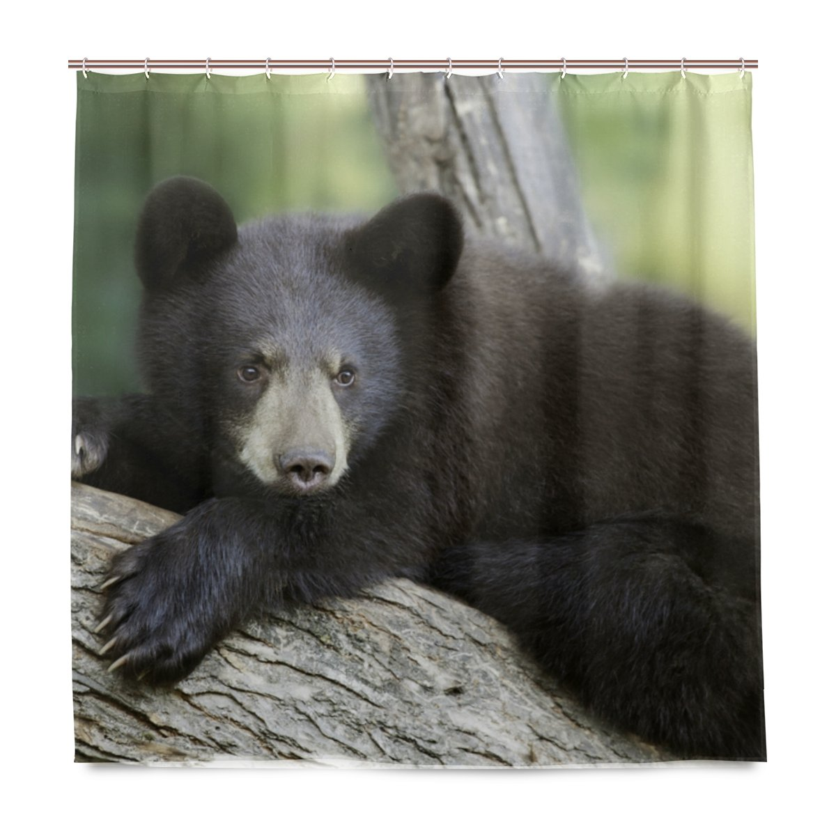 Amazon ALAZA Funny Black Bear Shower Curtain Waterproof Polyester Bath Curtian With Hooks 72x72 Inch Home Kitchen