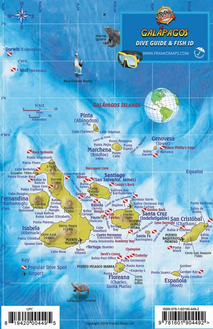 Galapagos Islands Dive Map & Sea Creatures Franko Maps ... on southeast asia map location, jamaica map location, tierra del fuego map location, british isles map location, greater antilles map location, puerto rico islands map location, denmark map location, austria map location, canada map location, czech republic map location, middle east map location, zimbabwe map location, panama map location, lesotho map location, uruguay river map location, hawaii islands map location, swaziland map location, namibia map location, philippines islands map location, galapagos map locator,
