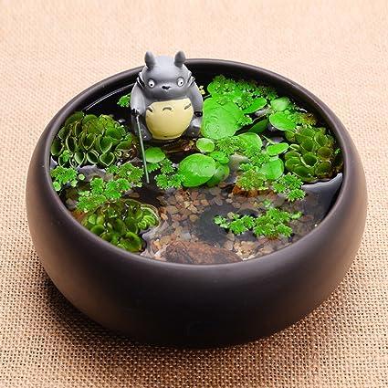 Amazon.com: yournelo Creative Totoro bricolaje botella ...