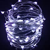 LEDMOMO USB Fairy Lights LED String LightsSilver Wire with Remote Control Christmas Birthday Festival Decoration (White 100 Lights)