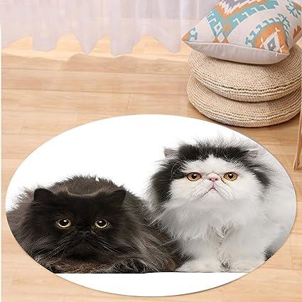 kisscase Custom carpetkitten Decor, diseño de impresión DIGITAL de gatos persa sentado en frente OT